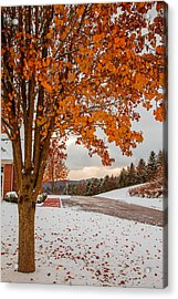 Acrylic Print featuring the photograph Autumn Or Winter by April Reppucci
