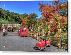 Autumn Orchard Acrylic Print by Joann Vitali