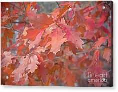 Autumn Paintbrush Acrylic Print