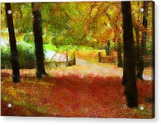 Autumn Park With Trees Of Beech Acrylic Print by Tommytechno Sweden