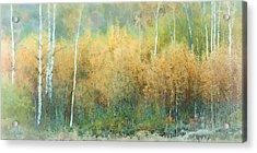 Autumn Pastels Acrylic Print