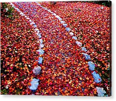 Acrylic Print featuring the photograph Autumn Path by Julia Ivanovna Willhite