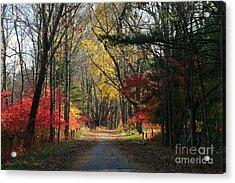 Autumn Paths    No.2 Acrylic Print