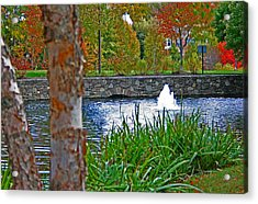 Acrylic Print featuring the photograph Autumn Pond Another View by Andy Lawless