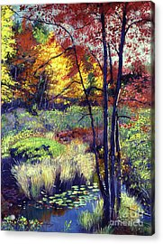 Autumn Pond Acrylic Print by David Lloyd Glover