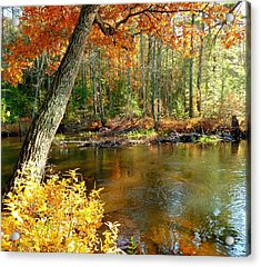 Acrylic Print featuring the photograph Autumn Pond by Elaine Franklin