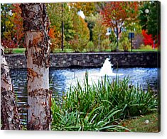 Acrylic Print featuring the photograph Autumn Pond by Andy Lawless