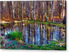 Autumn Pond Reflections Acrylic Print