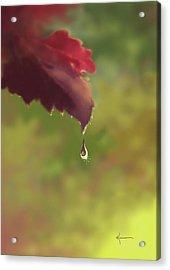Autumn Rain Acrylic Print by Kume Bryant