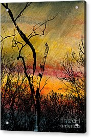 Autumn Rain Acrylic Print by R Kyllo