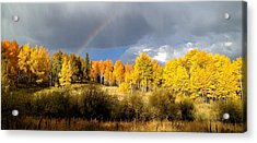 Autumn Rainbow Acrylic Print by Bob Berwyn