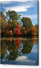 Autumn Reflection Acrylic Print by Karen Silvestri