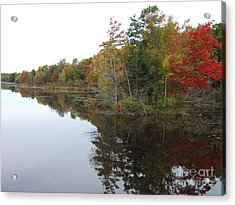 Autumn Reflection Acrylic Print by Margaret McDermott