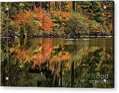 Autumn Reflection Acrylic Print