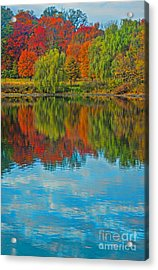 Autumn Reflection Acrylic Print by Todd Breitling