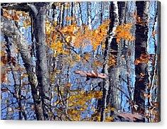 Autumn Reflection With Leaf Acrylic Print