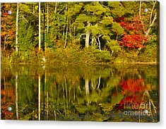 Acrylic Print featuring the photograph Autumn Reflections by Alice Mainville