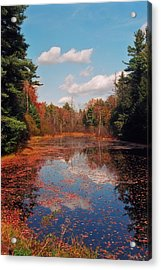 Autumn Reflections Acrylic Print by Joann Vitali