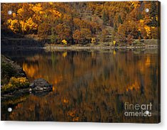 Autumn Reflections Acrylic Print by Mike  Dawson