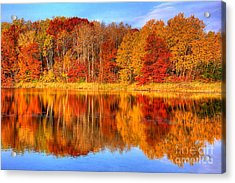 Autumn Reflections Minnesota Autumn Acrylic Print
