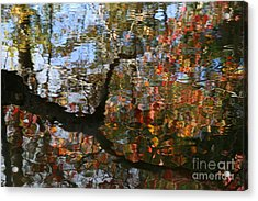 Autumn Reflections  Acrylic Print by Neal Eslinger