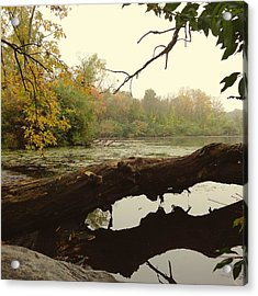 Acrylic Print featuring the photograph Autumn Reflections by Nikki McInnes