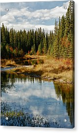 Autumn Reflections Acrylic Print