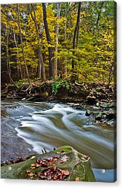 Autumn Returns Acrylic Print by Claus Siebenhaar