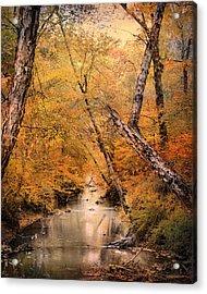 Autumn Riches 1 Acrylic Print by Jai Johnson
