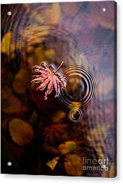 Autumn Ripples Acrylic Print by Mike Reid