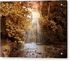 Acrylic Print featuring the photograph Autumn River Light by Jessica Jenney