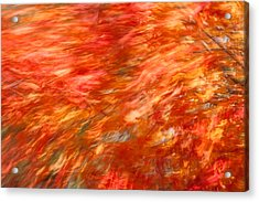 Acrylic Print featuring the photograph Autumn River Of Flame by Jeff Folger