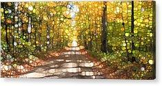 Autumn Road Mosaic Acrylic Print by Dan Sproul
