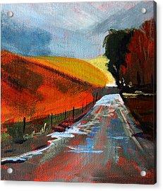 Autumn Road Acrylic Print by Nancy Merkle