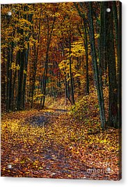 Autumn Roadway Reclamation Acrylic Print