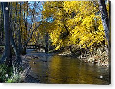 Autumn Scene At Valley Forge Acrylic Print by Bill Cannon