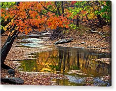 Autumn Serenity Acrylic Print by Frozen in Time Fine Art Photography