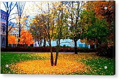 Autumn Series 1.1 Acrylic Print by Derya  Aktas
