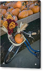 Acrylic Print featuring the photograph Autumn Shopping by Wayne Meyer