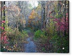 Autumn Silence No.2 Acrylic Print