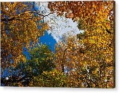 Autumn Sky Acrylic Print by Claus Siebenhaar