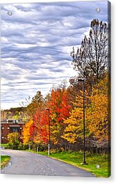Autumn Sky Acrylic Print by Frozen in Time Fine Art Photography