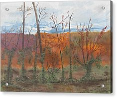 Acrylic Print featuring the painting Autumn Splendor by Diane Pape