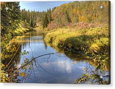 Autumn Splendor Acrylic Print by Jim Sauchyn