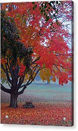 Autumn Splendor Acrylic Print by Lisa Phillips