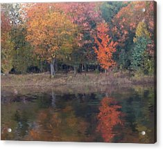 Autumn Splendor Acrylic Print by Michael Malicoat