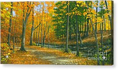 Acrylic Print featuring the painting Sawmill Creek by Michael Swanson