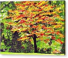 Autumn Splendor Acrylic Print by Patricia Griffin Brett