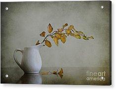 Autumn Still Life Acrylic Print by Diana Kraleva