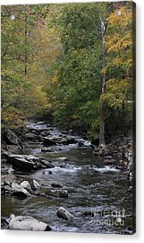 Roaring Stream In The Smokys Acrylic Print